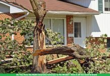 Do You Have the Right Insurance Coverage to Fix Winds? – Here is all you need to know