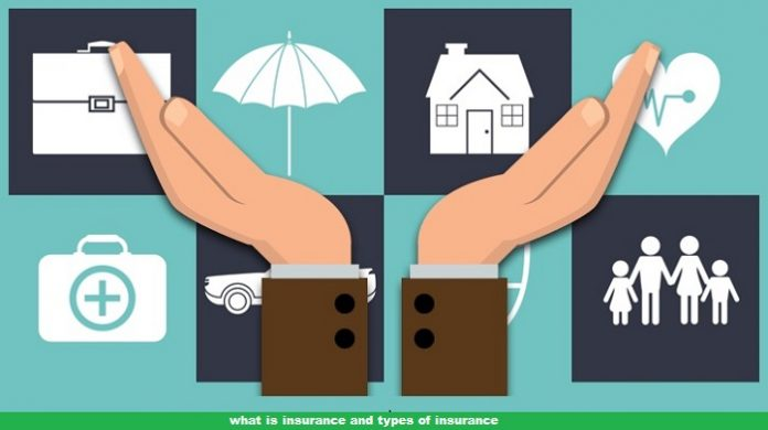 what is insurance and types of insurance